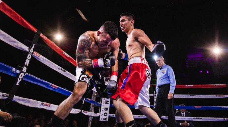 w ringu - program bokserski